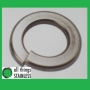 304: M6 Spring Washers. Box of 100